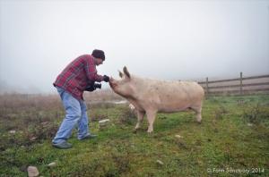 2014_10-22_FSNY_Joel_Anderson_Visit_DSC_3066_CREDIT_Farm_Sanctuary_720x477_72_RGB