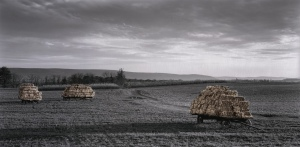 Rural_Impressions_Haywagons